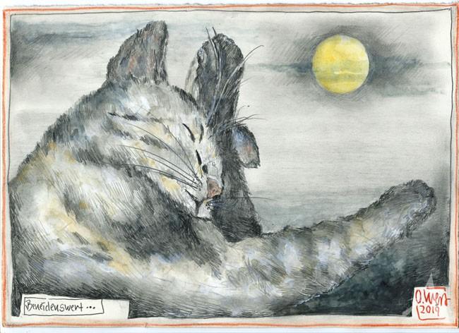 """Zeichnung - """"Beneidenswert...(Katze)"""" von OLE WEST"""