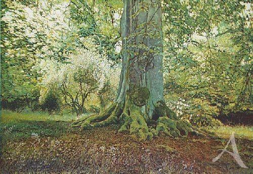 """Farbradierung """"Bowood Garden - Waldgarten I"""", Günther Hermann"""
