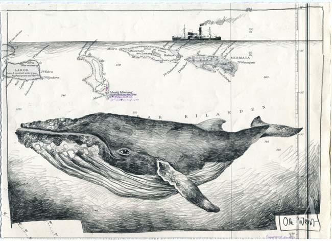 """Kunstdruck """"Wal"""" - von OLE WEST"""