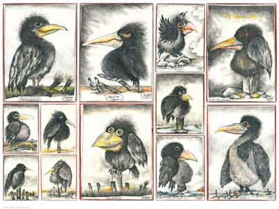 "Kunstdruck ""Vögel"""