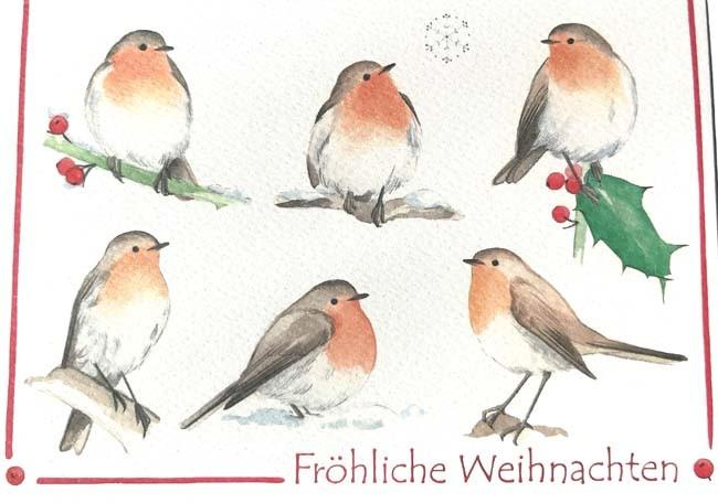 """Doppelkarte """"Fröhliche Weihnachten"""" (Rotkehlchen)"""