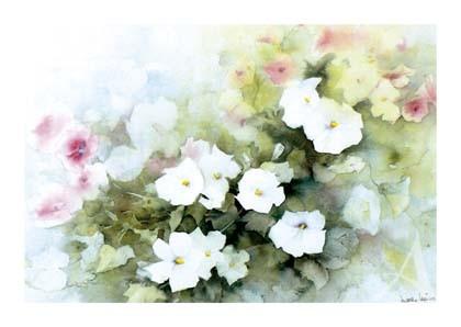 """Postkarte """"Rosa und weiße Malven'"""""""