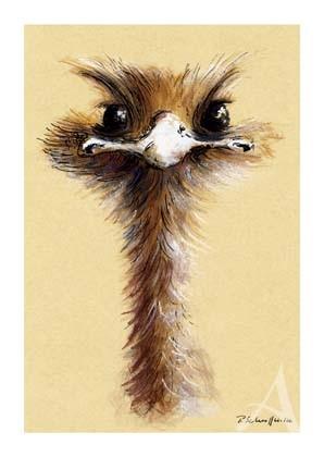 """Postkarte """"Ein zuversichtlicher Blick"""""""