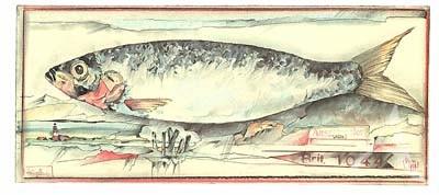 """Postkarte, """"HeringsLand"""" , DIN lang"""