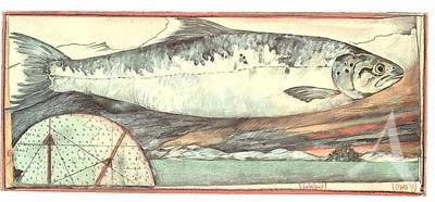 "Postkarte, ""LachsLand"" , DIN lang"