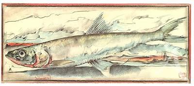 "Postkarte, ""SardinenKüste"" , DIN lang"