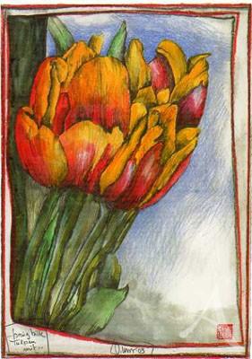 """Postkarte """"...bring bitte Tulpen mit"""""""
